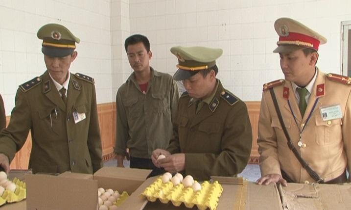 Bắt giữ gần 40 nghìn quả trứng gà Trung Quốc nhập lậu - 1