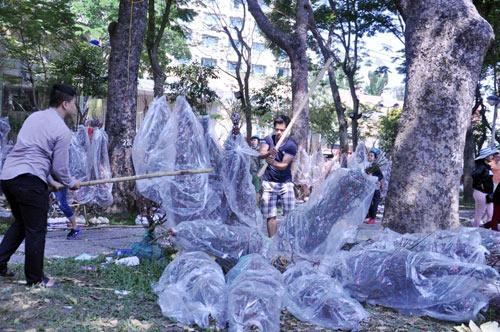 Hàng trăm gốc đào ở SG bị vứt vào xe rác trưa 30 Tết - 6