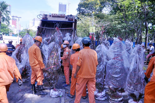 Hàng trăm gốc đào ở SG bị vứt vào xe rác trưa 30 Tết - 10
