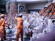 Tin tức trong ngày - Hàng trăm gốc đào ở SG bị vứt vào xe rác trưa 30 Tết