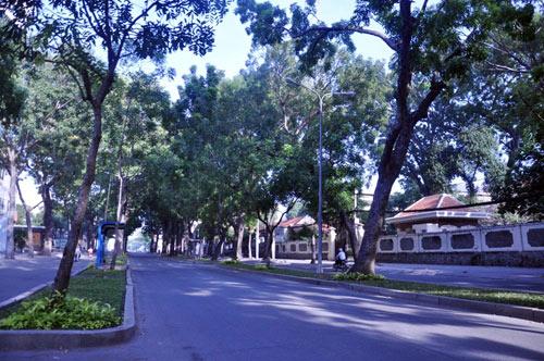 Sài Gòn se lạnh và tĩnh lặng sáng đầu năm - 1