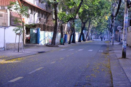 Sài Gòn se lạnh và tĩnh lặng sáng đầu năm - 4