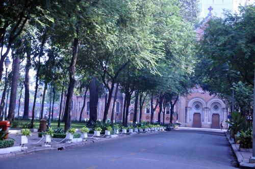 Sài Gòn se lạnh và tĩnh lặng sáng đầu năm - 9