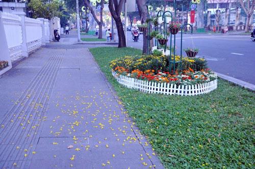 Sài Gòn se lạnh và tĩnh lặng sáng đầu năm - 10