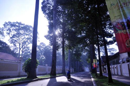 Sài Gòn se lạnh và tĩnh lặng sáng đầu năm - 6