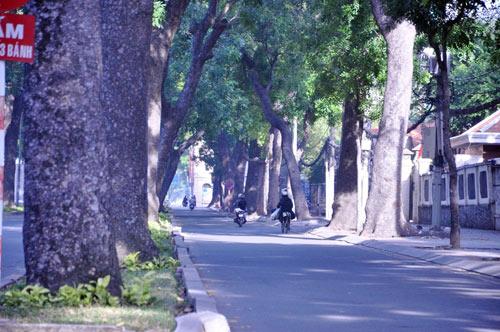 Sài Gòn se lạnh và tĩnh lặng sáng đầu năm - 12