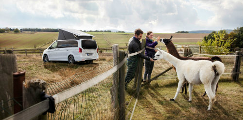Cắm trại xuân với Mercedes-Benz Marco Polo Horizon - 2