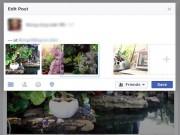 """Công nghệ thông tin - Mẹo Facebook: 3 """"bí kíp"""" đăng ảnh Xuân không phải ai cũng biết"""