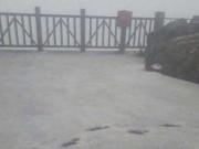 Tin tức trong ngày - Mưa đá phủ trắng đỉnh Fansipan
