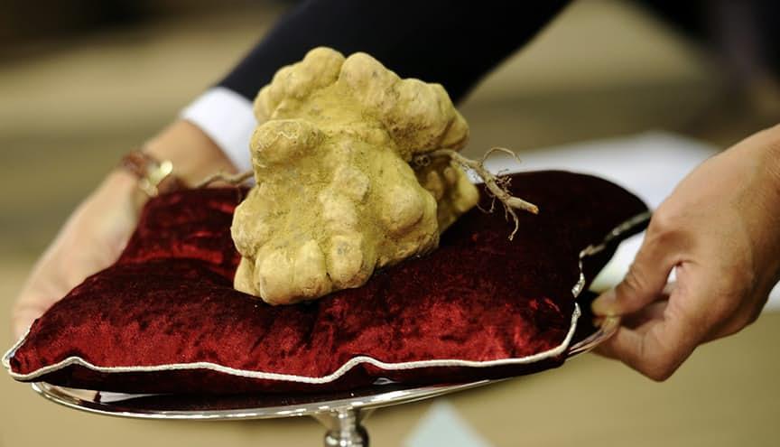 10 món ăn đắt đỏ nhất thế giới - 10