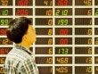 Năm nay, đầu tư cổ phiếu nào?