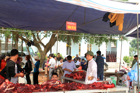 Giá thịt trâu chọi đắt gấp 3 - 4 lần thịt trâu thường - 7