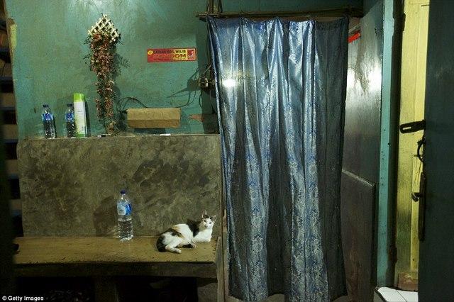 """Nhà thổ cho giới lắm tiền """"sống khỏe"""" ở Indonesia - 6"""