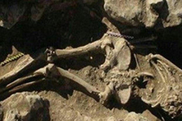"""Xương người """"khổng lồ"""" cùng kho báu 2.500 tuổi ở Iran - 3"""