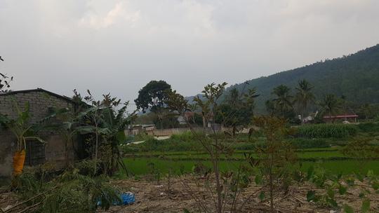 """Vĩnh Phúc dừng chủ trương phá rừng xây """"siêu nghĩa trang"""" - 2"""