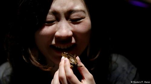 """""""Ngã ngửa"""" với món ăn kỳ quặc nhất ngày 14/2 ở Nhật - 4"""