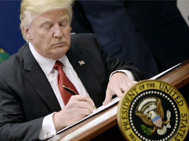 Những ai bị chính quyền Trump bắt, trục xuất khỏi Mỹ? - 1