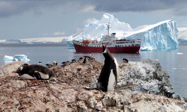 Băng Nam Cực chưa bao giờ nhỏ như bây giờ - 1