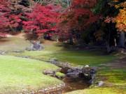 Du lịch - Lạc giữa ngôi làng thần tiên ở Nhật Bản