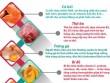 Infographic: 9 thực phẩm tốt dành cho người thiếu máu não