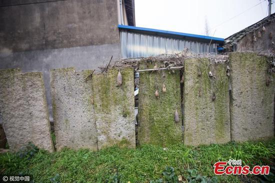 Trung Quốc: Dân dùng bia mộ cổ trăm năm để xây nhà - 1