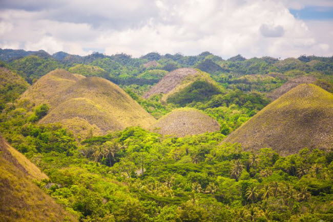 Những quả đồi này biến thành màu nâu, khiến chúng được gọi là đồi Sô-cô-la. Các chuyên gia địa chất đưa ra giả thuyết rằng những ngọn đồi & nbsp;được hình thành từ quá trình xói món của đá vôi.