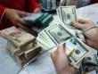 Tỉ giá USD giảm nhẹ sau chuỗi ngày tăng liên tục