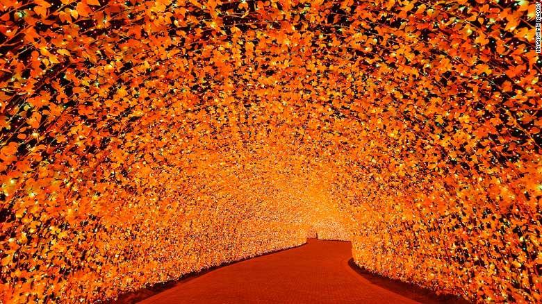 Choáng ngợp trước vẻ huyền ảo của lễ hội ánh sáng ở Nhật - 5