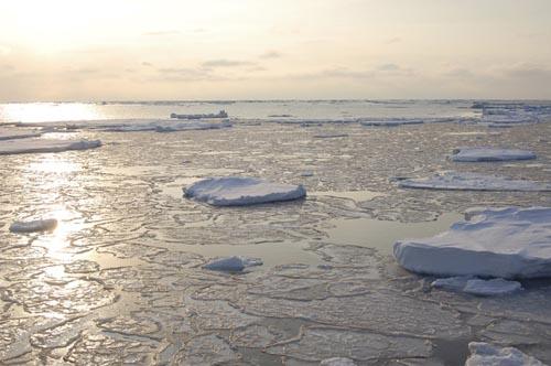 Dự án táo bạo 500 tỷ USD có thể cứu Trái đất - 1