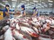 Tập đoàn bán lẻ lớn nhất châu Âu nói gì về cá tra Việt?