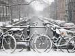 Amsterdam hóa xứ sở thần tiên sau mưa tuyết