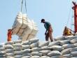 """Lập đoàn xác minh vụ """"xin giấy phép xuất khẩu gạo mất 20.000 USD"""""""