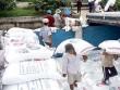 Phải chấm dứt 'giấy phép xuất khẩu gạo 20.000 USD'