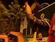 Cuộc chiến giành lại vỉa hè: Tượng gà, kỳ lân đá có bị sung công?