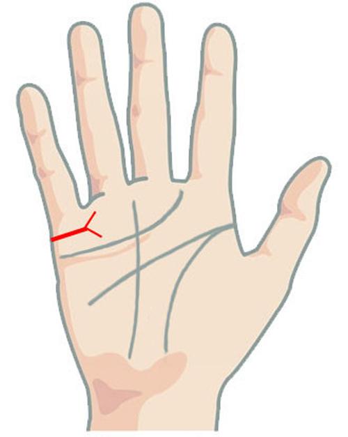 Nhìn vào các đường chỉ tay để biết bao giờ bạn kết hôn - 6