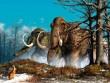 Tiết lộ lý do thực sự khiến loài voi ma mút tuyệt chủng