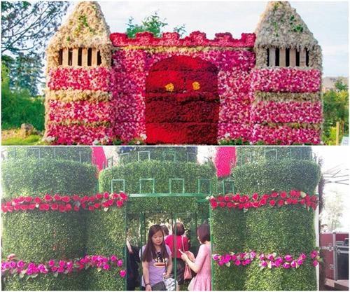 """Sửng sốt với 3 lễ hội hoa được ví như """"thảm họa mua hàng online"""" - 2"""