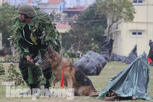 Mục kích nội công phi thường của cảnh sát đặc nhiệm - 10