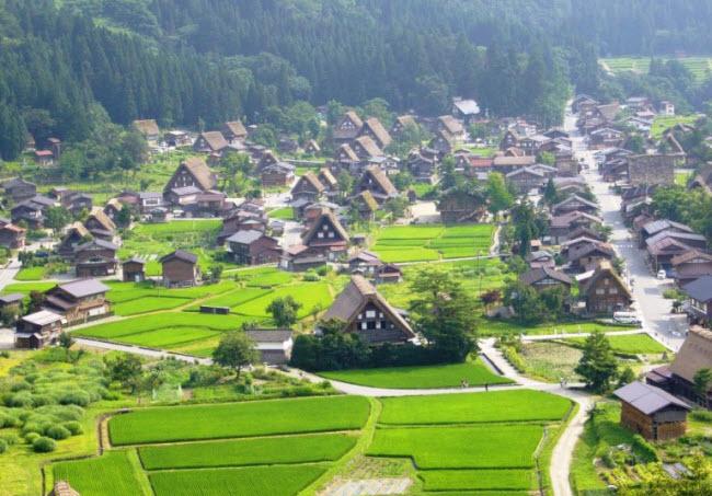 Làng cổ Shirakawa-go nằm ở chân núi Haku-san ở tỉnh Gifu, Nhật Bản. Nơi đây hiện có 114 ngôi nhà được xây dựng cách đây hơn 200 năm theo phong cách kiến trúc gassho zukuri ở thời kỳ Edo.