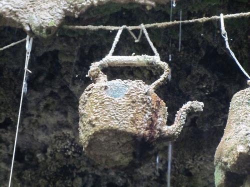 """Giải mã giếng nước """"quỷ ám"""" khiến mọi vật hóa đá - 6"""