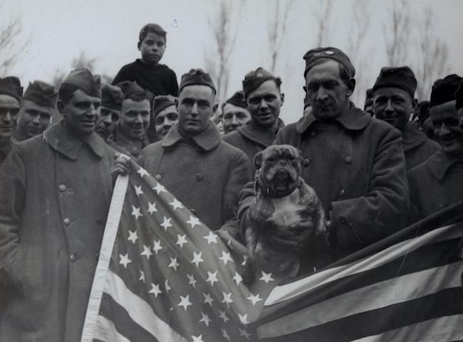 """Những con vật có """"vai vế"""" trong quân đội Mỹ Thế chiến I - 2"""