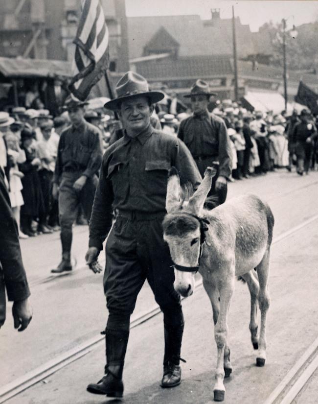 """Những con vật có """"vai vế"""" trong quân đội Mỹ Thế chiến I - 3"""