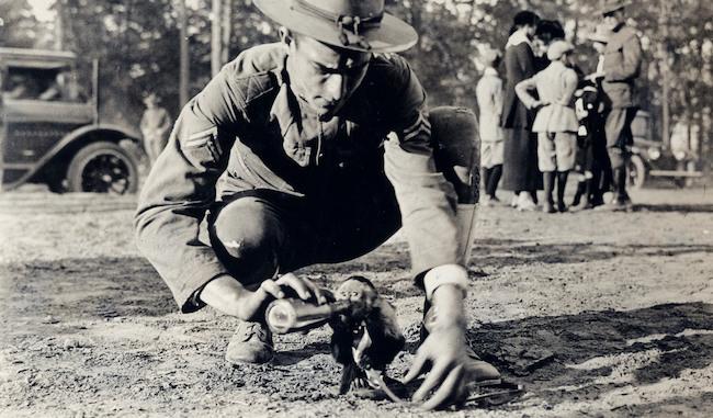 """Những con vật có """"vai vế"""" trong quân đội Mỹ Thế chiến I - 1"""