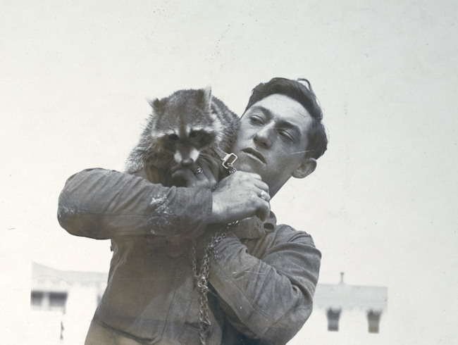 """Những con vật có """"vai vế"""" trong quân đội Mỹ Thế chiến I - 10"""