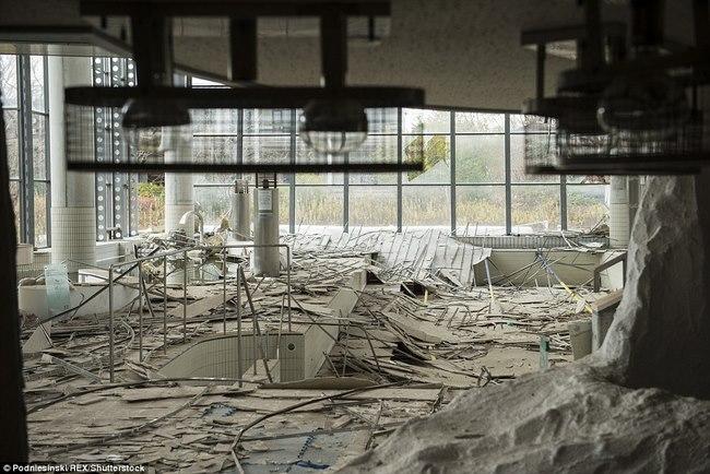 Robot chết liên tục khi thăm dò khu hạt nhân Fukushima - 2