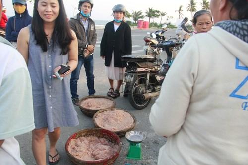 Ngư dân Đà Nẵng kiếm bạc triệu mỗi ngày từ ruốc - 5