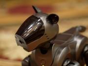 Robot chết liên tục khi thăm dò khu hạt nhân Fukushima