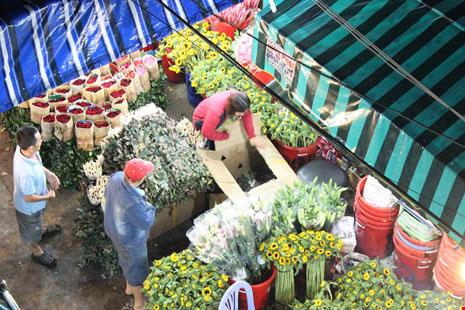 Trước ngày 8-3, chợ hoa Hồ Thị Kỷ có gì hấp dẫn? - 4