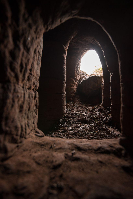 Anh: Phát hiện hang động hiệp sĩ 700 tuổi dưới hang thỏ - 3