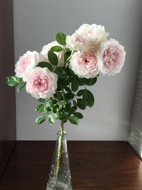 Học bà mẹ Hà thành cắm hoa cực đẹp cho ngày 8/3 - 6